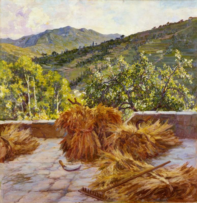 Antonio Discovolo - Grano del 1931