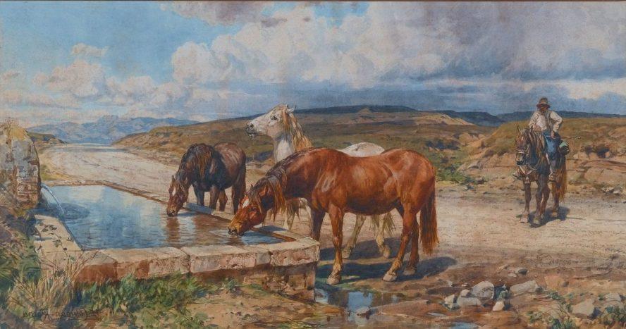 Enrico Coleman Cavalli bevono nella fontana