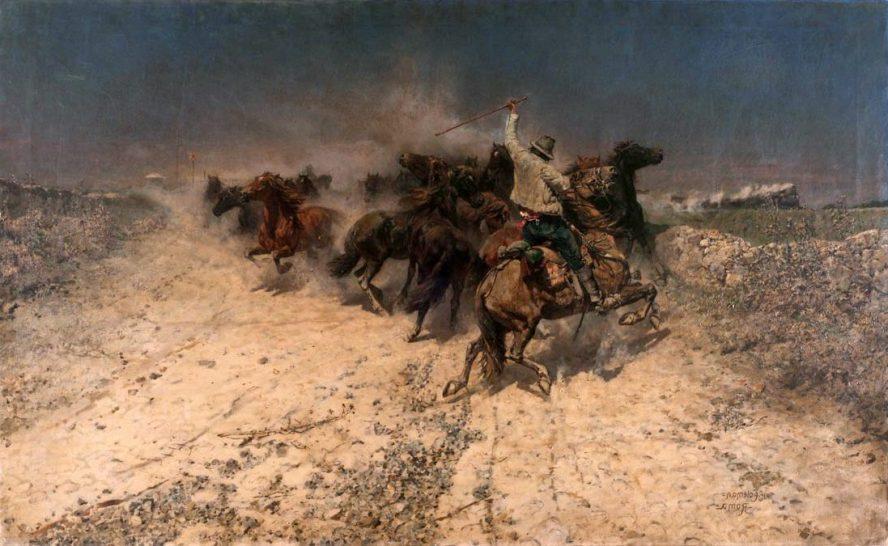 Enrico Coleman cavalli al pascolo