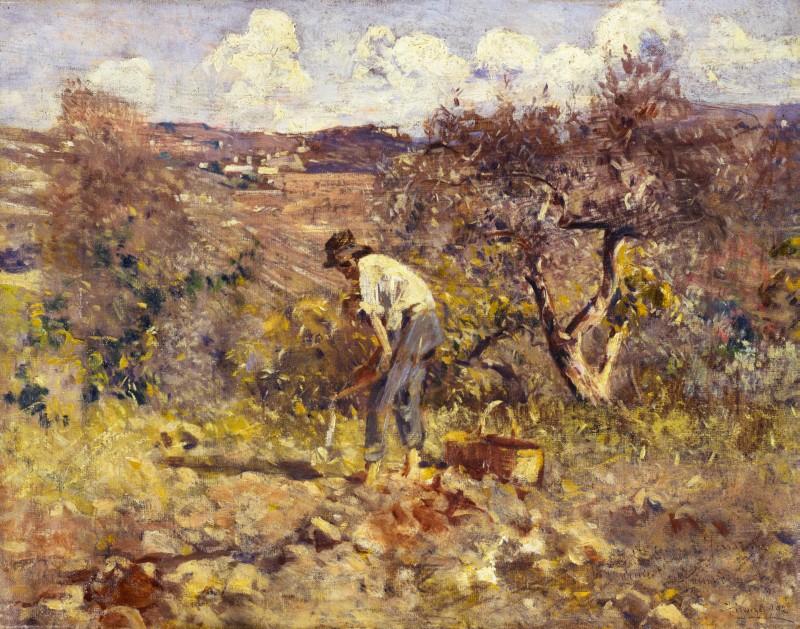 Ludovico Tommasi Lavoro in campagna