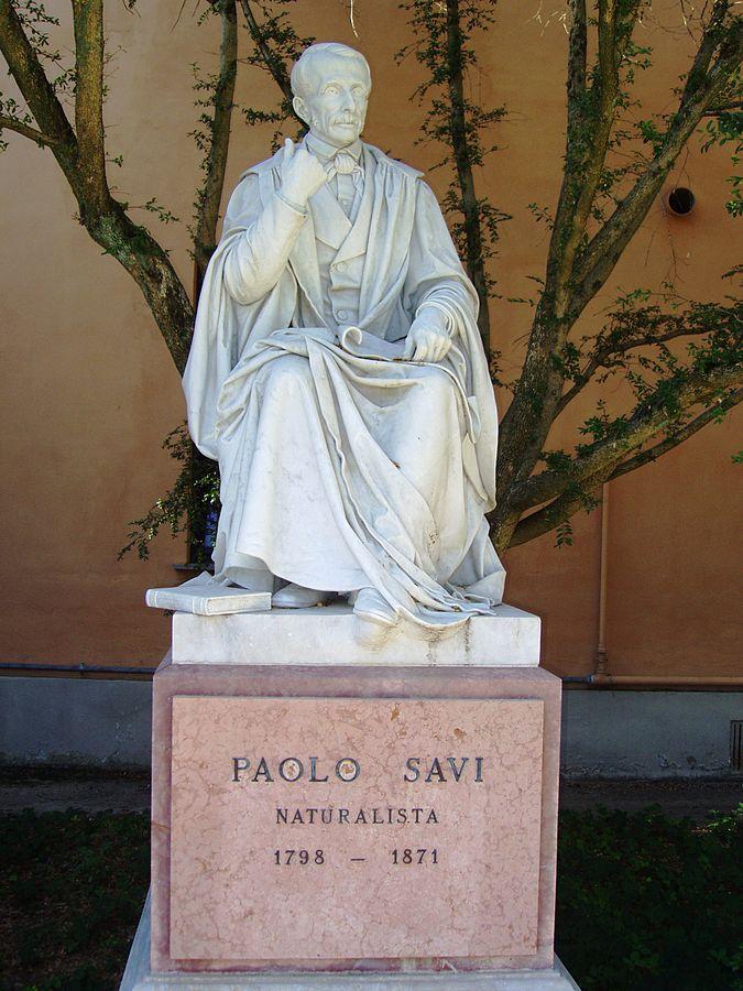 Vincenzo Consani Statua di Paolo Savi Orto botanico di Pisa
